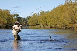 is-river-fly-fishing-crop